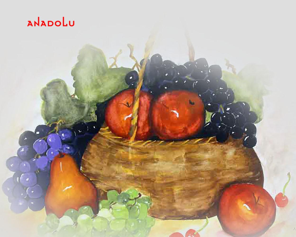 Meyve Tabağı Çizimleri Ankara