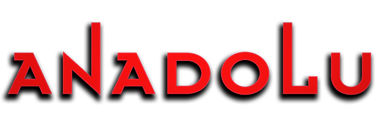 Anadolu Pembe Logo Ankara