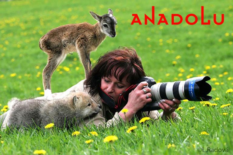 Ankarada Doğa Fotoğrafı Çekimleri