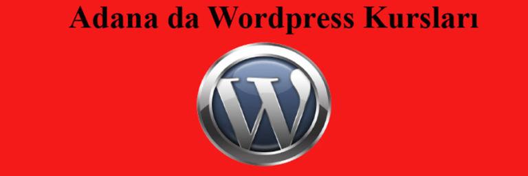 wordpress kursları Ankara